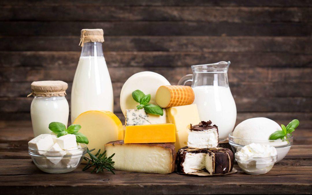 Un récent rapport analyse l'avenir de la durabilité dans l'industrie laitière