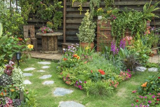Comment préserver la biodiversité dans son jardin