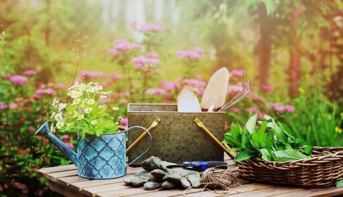 Astuces pour réaliser un jardin écologique !