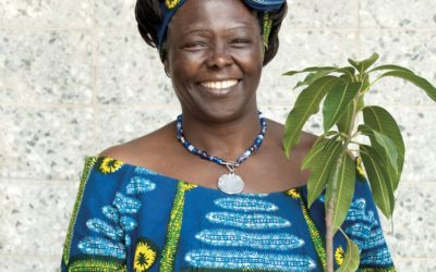 Biographie de Wangari Muta Maathai, qui est cette biologiste prix Nobel de la paix ?