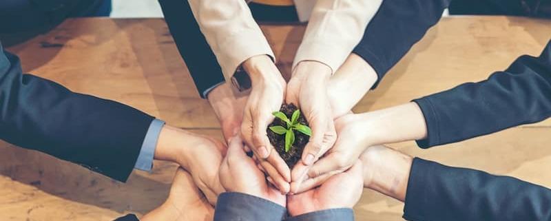 Le-Notariat-profession-verte-sensible-ecologie-et-environnement